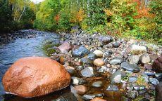 Камни на берегу ручья