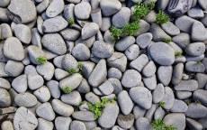 Камни, галька, трава, гранит