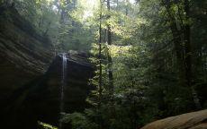Водопад в тенистом лесу