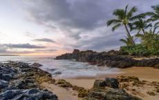 тропики, пляж, песок, океан, пальмы