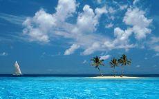 Три пальмы на острове