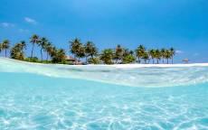 тропики, рай, лето, океан, пальмы, голубая вода, прозрачная вода