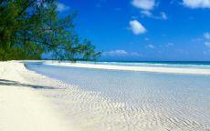 Пустой берег океана