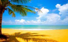 Желтый песок на пляже