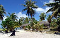 Хижины под пальмами