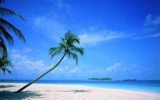 Далекий остров