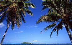 Остров в дали