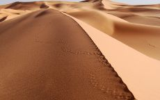 Песчаный бархан