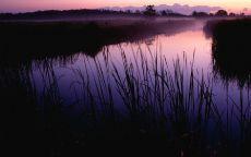 Ранее утро на озере