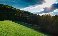 Облака, солнце, зеленое поле, деревья, лес