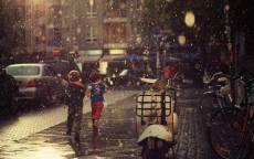 17_Дождь