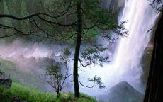 Водопад в хвойном лесу