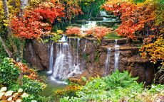Каскадный водопад в осеннем лесу.