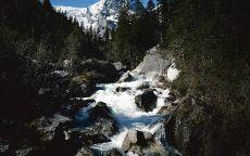 Гора в снегу и ручей