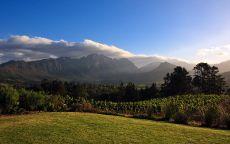 Зеленое поле в горной долине.