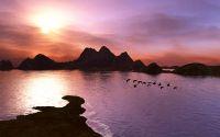 Перелетные птицы на закате