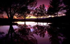 Вечернее солнце и река