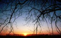 Закат на фоне осеннего леса