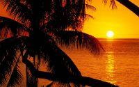 Заход солнца в тропиках
