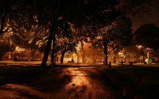 Поздний вечер в парке