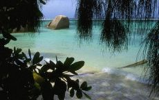 Одинокий камень на пляже