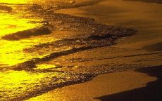 Прибрежная волна на закате