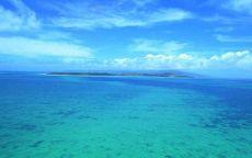 Зеленная вода в океане