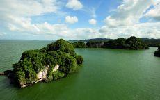 Острова с зеленым лесом.