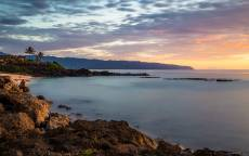 Океан, берег, горизонт, пальмы, закат, облака