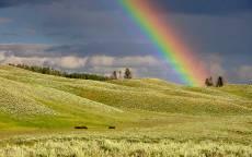 Радуга, зеленое поле, синее небо