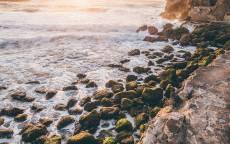 Зеленые камни, прибой, пена волна, каменистый берег