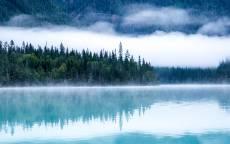 Дикая природа, голубое лесное озеро, зеленый лес, туман
