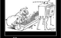По телевизору говорят правду