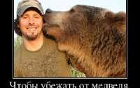 Чтобы убежать от медведя...
