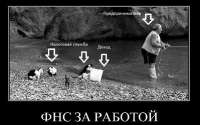 Демотиватор ФНС за работой