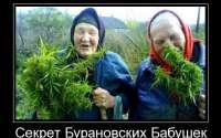 Секрет Бурановских бабушек