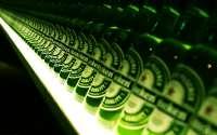 Бутылки пива heineken