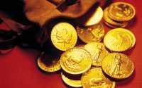 Кошелек с золотыми монетами