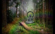 Статуя будды в лесу