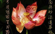 Лотус Будда