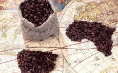 Старинная карта мира и кофейные зерна