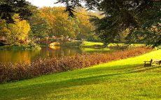 Ухоженный пруд с приятным осенним пейзажем