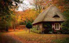 Сказочный домик на фоне осеннего леса