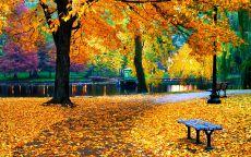 Осенний парк с яркими красками осени