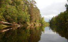 Река Шлина в сентябре