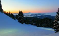 зима, снег, склон, ели, лес, горы