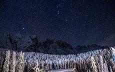 Зима, ночь, звездное небо, лес в снегу