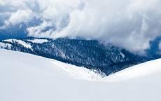 Зима, снежное поле, снег, холодный лес