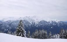 Зима, елки в снегу, горы в снегу