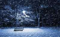 Зимняя ночь в парке